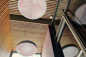 Guillaume Bottazzi, installation lumineuse, oeuvres rétroéclairées, Lyon